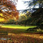 Parcs et jardins de Paris, un écrin de verdure dans la capitale